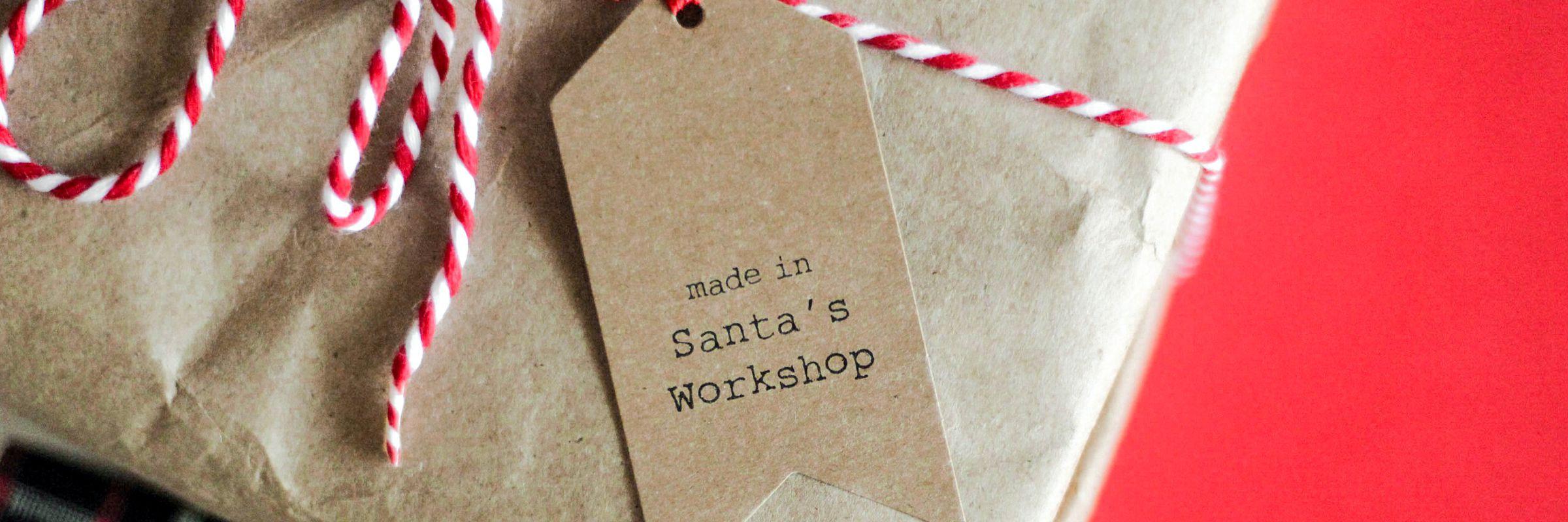 Santa, Inc. – The amazing business model of a reindeer pilot